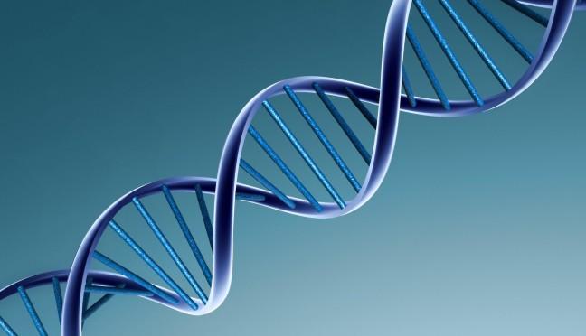 DNA: la scoperta